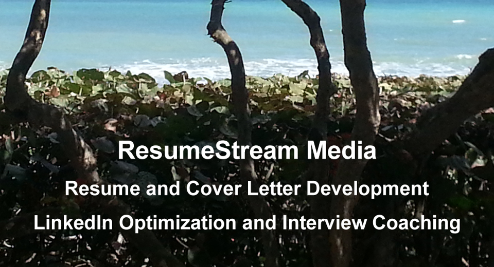 resumestream media resume writing and career management long